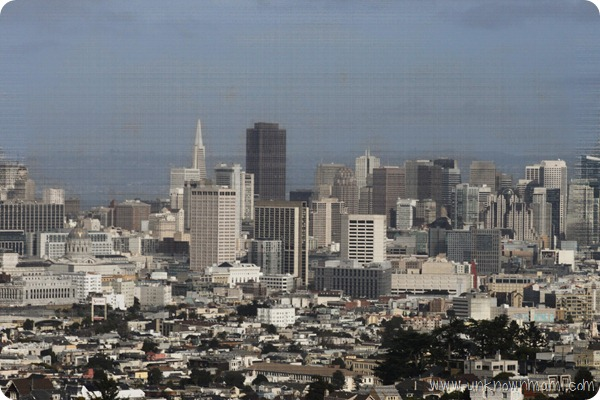 Beautiful-San-Francisco-View