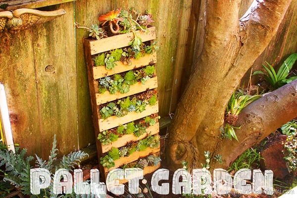 How to make a pallet garden