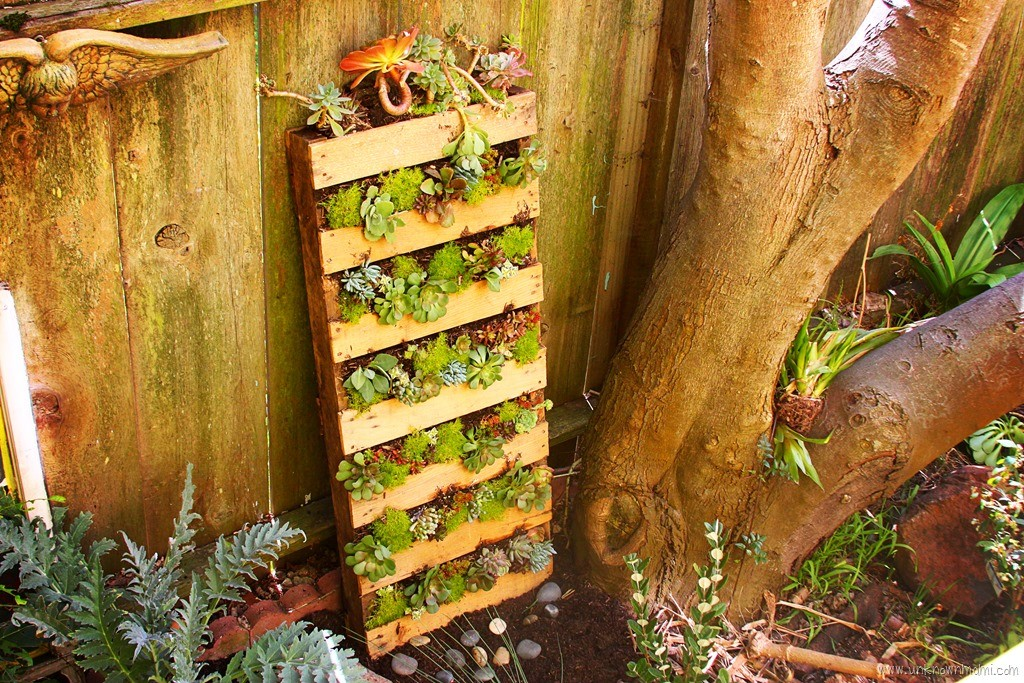 How to make a pallet garden unknown mami by claudya - Reusing pallets in the garden ...