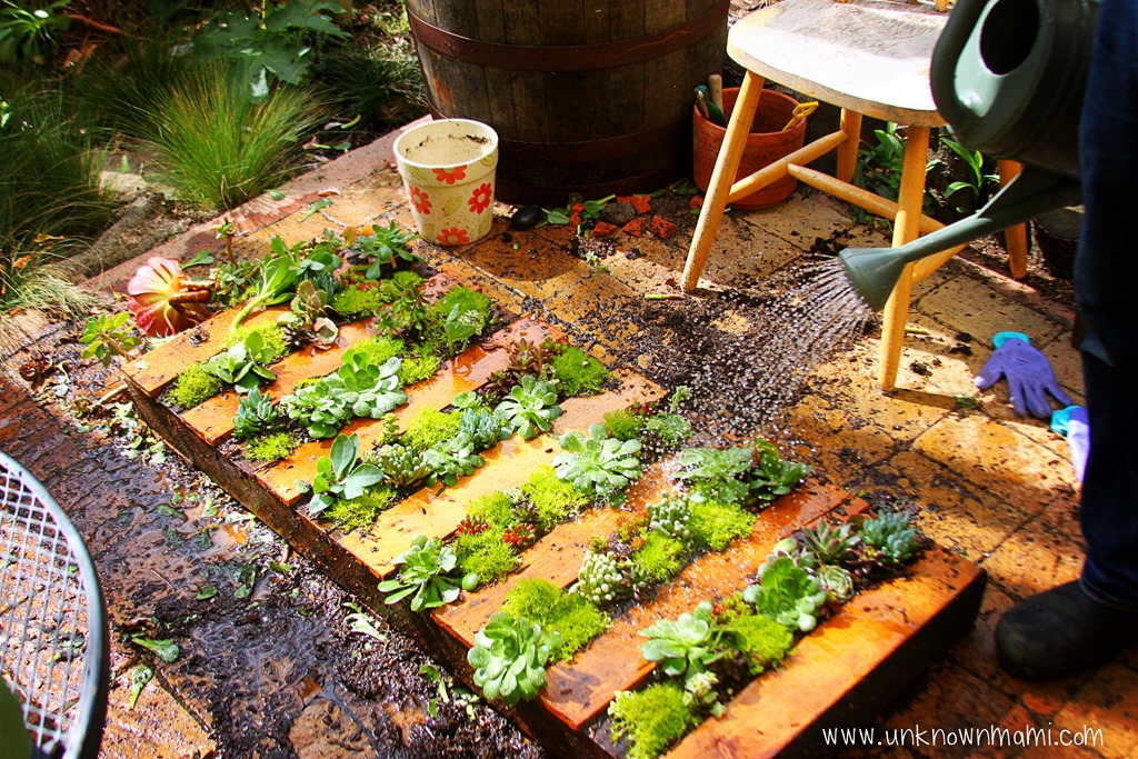 How to Make a Pallet Garden Unknown Mami by Claudya