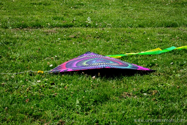 Kite on the ground