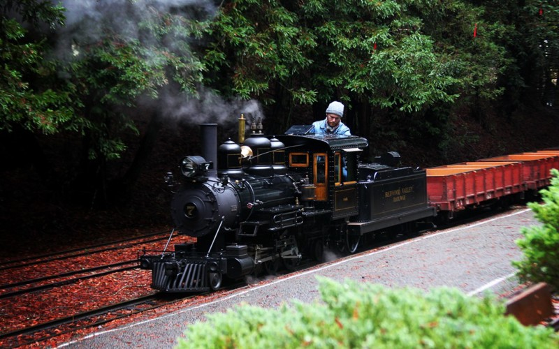 Redwood Valley Railway (Sundays In My City)