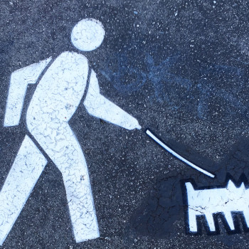 Dog leash signs by fnnch