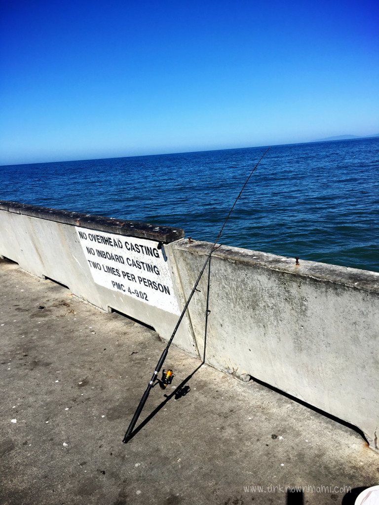 Pacifica pier sundays in my city unknown mami by for Pacifica pier fishing report