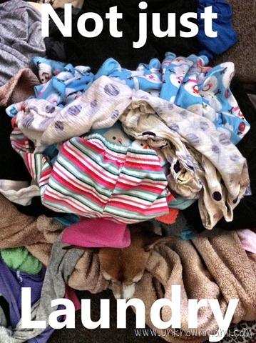 DogGone Laundry