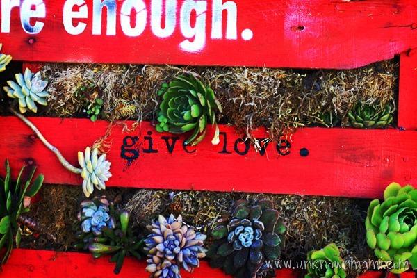 Inspirational pallet garden