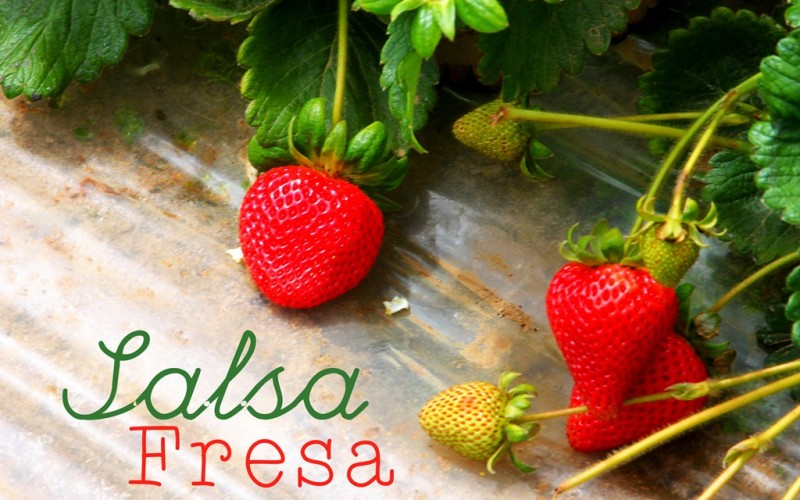 Salsa Fresa: Strawberry, Avocado, and Grilled Corn Salsa
