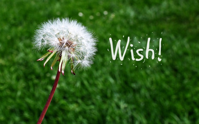 Wednesday Wishes: Why Not Wish for What You Want?