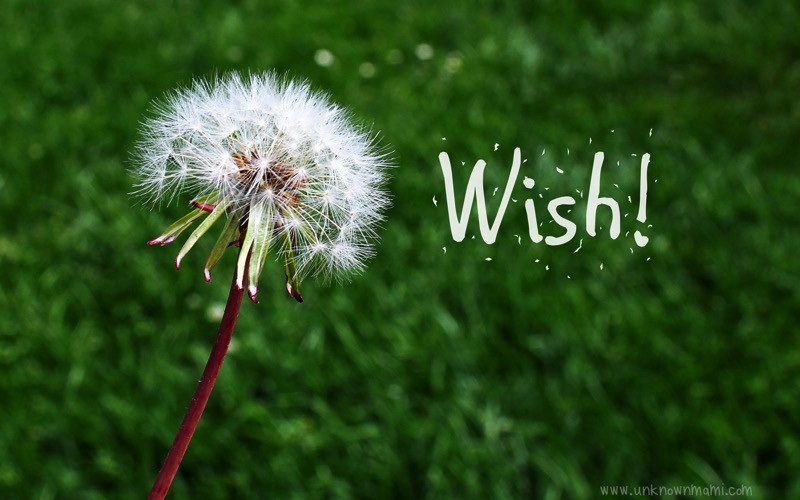 There Is Power in Voicing Your Wishes (Wednesday Wishes)