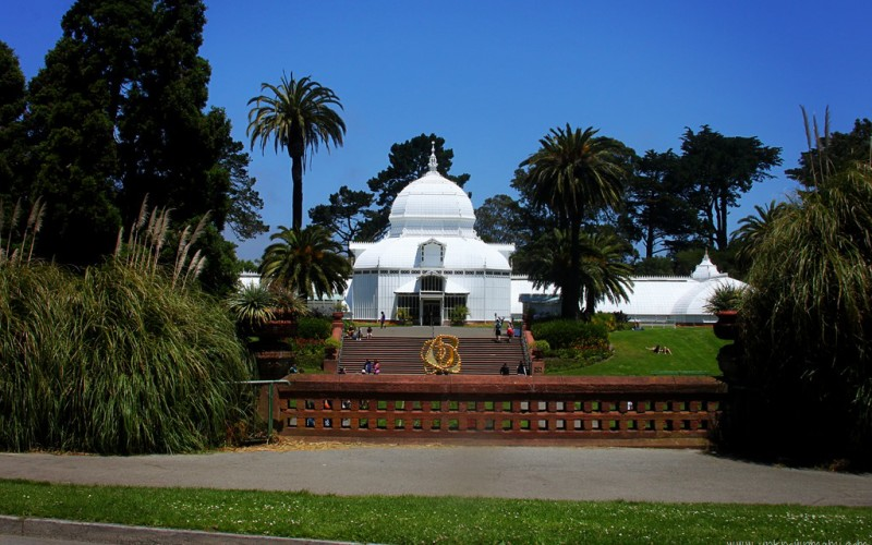 Conservatory of Flowers (Sundays In My City)
